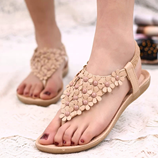 LAKESHI Womens Summer Flower Design Brown Sandals